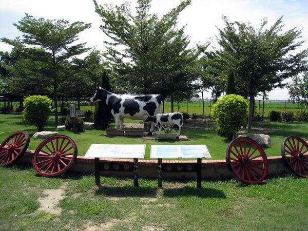 乳牛休閒園區