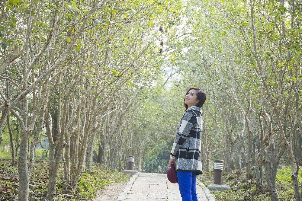 台南旅遊網