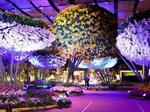 Taiwan International Orchid Show