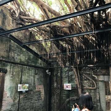 The inside of the Anping Tree House (1)