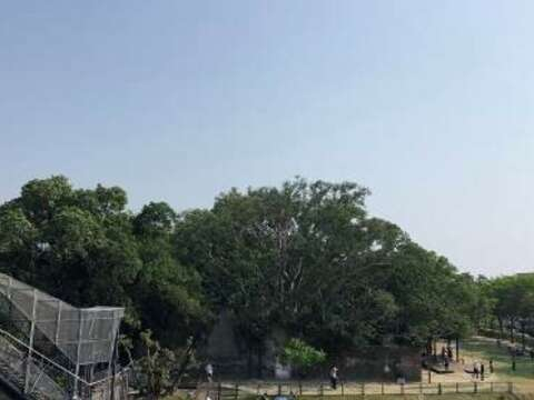 Look toward the Anping Tree House from the observation platform