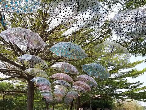 民眾在傘下開心合影