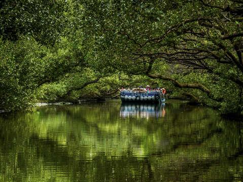 「海陸雙拼」遊程包含台南熱門景點四草綠色隧道