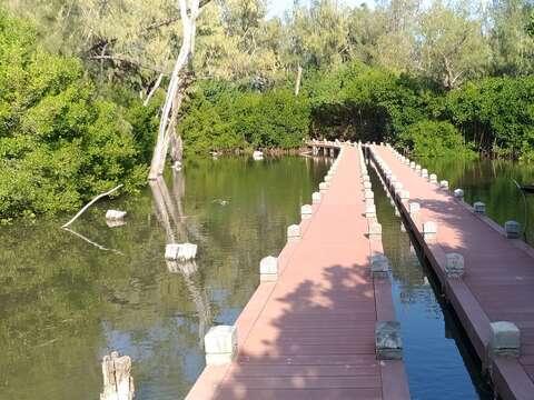北側水漾森林棧道